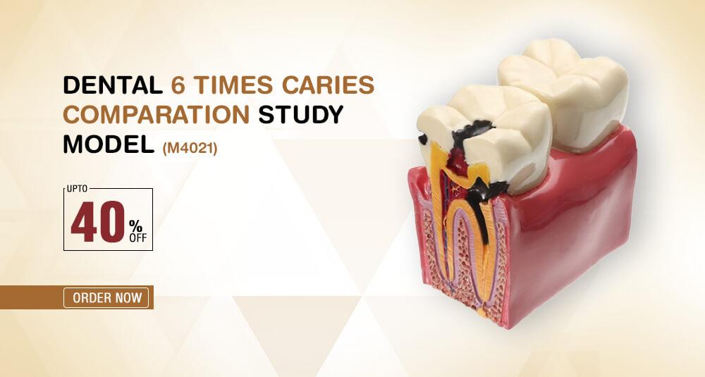 Dental Lab Products